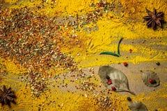 Ινδική επιλογή καρυκευμάτων πέρα από το σκοτεινό ξύλινο πίνακα Τρόφιμα ή πικάντικη έννοια μαγειρέματος, υγιές υπόβαθρο κατανάλωση στοκ εικόνες με δικαίωμα ελεύθερης χρήσης