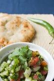 ινδική σαλάτα αγγουριών στοκ εικόνες με δικαίωμα ελεύθερης χρήσης