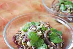 ινδική σαλάτα φακών στοκ εικόνα