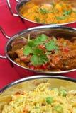 ινδικό γεύμα κάρρυ Στοκ Εικόνα
