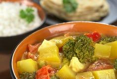 ινδικό λαχανικό κάρρυ Στοκ εικόνα με δικαίωμα ελεύθερης χρήσης