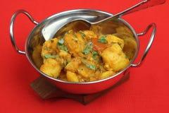 ινδικό λαχανικό πιάτων κάρρ&upsil Στοκ Εικόνες