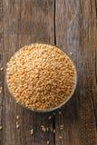 Ινδικό σιτάρι σίτου, σιτάρι σίτου στο κύπελλο στοκ εικόνες