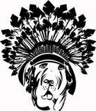 Ινδικό σκυλί διάτρητων Στοκ Φωτογραφίες