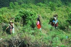 ινδικό χωριό ζωής Στοκ εικόνες με δικαίωμα ελεύθερης χρήσης