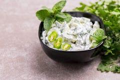 Ινδικό raita αγγουριών με το γιαούρτι, μέντα, cilantro Ελληνικό tzatzi Στοκ Εικόνα