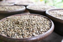 Ινδονησιακά φασόλια καφέ Στοκ φωτογραφία με δικαίωμα ελεύθερης χρήσης
