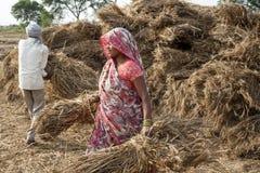 Ινδία στοκ φωτογραφίες