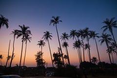 Ινδία - Goa - παραλία Arambol Στοκ φωτογραφία με δικαίωμα ελεύθερης χρήσης
