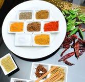 Ινδικά και μαγειρεύοντας καρυκεύματα Στοκ εικόνα με δικαίωμα ελεύθερης χρήσης