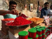 ινδικά καρυκεύματα Στοκ Εικόνες