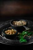 Ινδικά μαγειρεύοντας συστατικά στοκ εικόνα με δικαίωμα ελεύθερης χρήσης