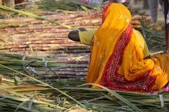 Ινδικές γυναίκες που απασχολούνται στους καλάμους μπαμπού Στοκ φωτογραφία με δικαίωμα ελεύθερης χρήσης
