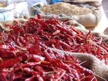 ινδική αγορά Στοκ εικόνες με δικαίωμα ελεύθερης χρήσης