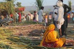Ινδική γυναίκα που εργάζεται στο μπαμπού Στοκ Φωτογραφίες