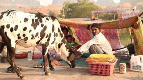 Ινδικοί λαοί στην αγορά οδών απόθεμα βίντεο
