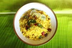 Ινδικός χορτοφάγος Στοκ Εικόνα