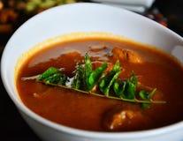 Ινδικό κύριο πιάτο Στοκ φωτογραφία με δικαίωμα ελεύθερης χρήσης