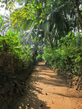 Ινδικό χωριό στη ζούγκλα Στοκ Εικόνα