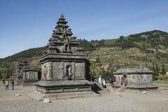 Ινδοί ναοί Arjuna, Ιάβα Στοκ Εικόνες
