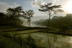 Ινδονησία Στοκ Εικόνες