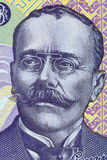 Ιονικό πορτρέτο του Luca Caragiale από τα ρουμανικά χρήματα Στοκ φωτογραφίες με δικαίωμα ελεύθερης χρήσης