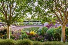 8 Ιουνίου 2018 Λος Άντζελες/ασβέστιο/ΗΠΑ - ο πολύβλαστος κεντρικός κήπος του Robert Irwin στο κέντρο Getty στοκ εικόνες