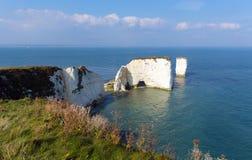 Ιουρασικό παλαιοί Harry ακτών σχηματισμοί κιμωλίας βράχων του Dorset Αγγλία UK συμπεριλαμβανομένου ενός σωρού Στοκ Εικόνα