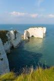 Ιουρασικό παλαιοί Harry ακτών σχηματισμοί κιμωλίας βράχων του Dorset Αγγλία UK συμπεριλαμβανομένου ενός σωρού Στοκ Φωτογραφία