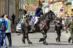 Ιππέας στο μαύρο dray-άλογο Στοκ εικόνα με δικαίωμα ελεύθερης χρήσης