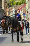 Ιππέας στο μαύρο dray-άλογο Στοκ φωτογραφία με δικαίωμα ελεύθερης χρήσης