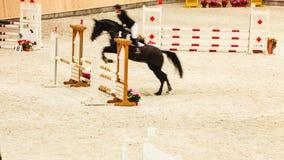 ιππασία παρουσιάστε το άλμα, το άλογο και αναβάτη πέρα από το άλμα Στοκ Εικόνα
