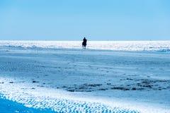 Ιππασία σε μια παραλία κατά μήκος της θάλασσας Στοκ φωτογραφία με δικαίωμα ελεύθερης χρήσης