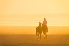 Ιππασία στην παραλία στο ηλιοβασίλεμα Στοκ φωτογραφίες με δικαίωμα ελεύθερης χρήσης