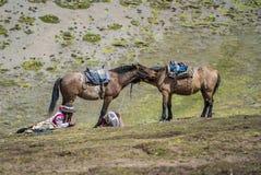 Ιππασία στο βουνό ουράνιων τόξων στοκ εικόνες με δικαίωμα ελεύθερης χρήσης
