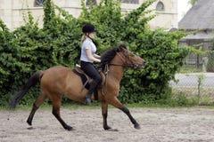 ιππασία Στοκ εικόνες με δικαίωμα ελεύθερης χρήσης