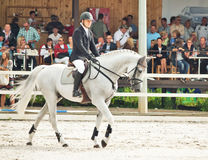 ιππικός αθλητισμός άλματο στοκ φωτογραφίες