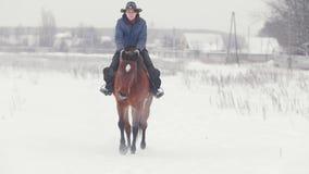 Ιππικός αθλητισμός - γυναίκα αναβατών στο άλογο που περπατά χιονώδη σε υπαίθριο απόθεμα βίντεο