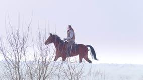 Ιππικός αθλητισμός - γυναίκα αναβατών στο άλογο που περπατά χιονώδη σε υπαίθριο φιλμ μικρού μήκους