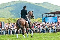 Ιππικός αθλητισμός. Θηλυκός αναβάτης εκπαίδευσης αλόγου σε περιστροφές Στοκ Εικόνες