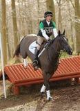 Ιππικός αθλητισμός: άλμα αλόγων Στοκ Φωτογραφίες