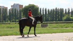 Ιππικός αθλητισμός απόθεμα βίντεο