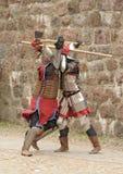 ιππότες πάλης πεδίων μάχης τ&ep Στοκ Εικόνα