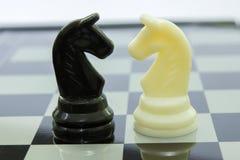 Ιππότης γραπτός στο σκάκι Στοκ Εικόνες
