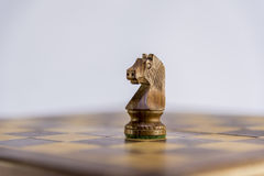 Ιππότης, παιχνίδι του σκακιού με το άσπρο υπόβαθρο Στοκ Φωτογραφία