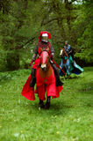 Ιππότης σε ένα άλογο σε Tyreso Σουηδία Στοκ Εικόνες