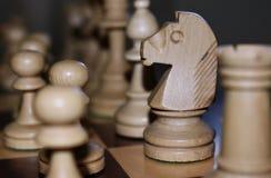 Ιππότης σκακιού στοκ φωτογραφίες