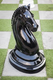 Ιππότης σκακιού Στοκ Εικόνα