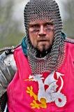 ιππότης Στοκ Εικόνες
