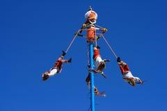 ιπτάμενα χορού Στοκ Εικόνες